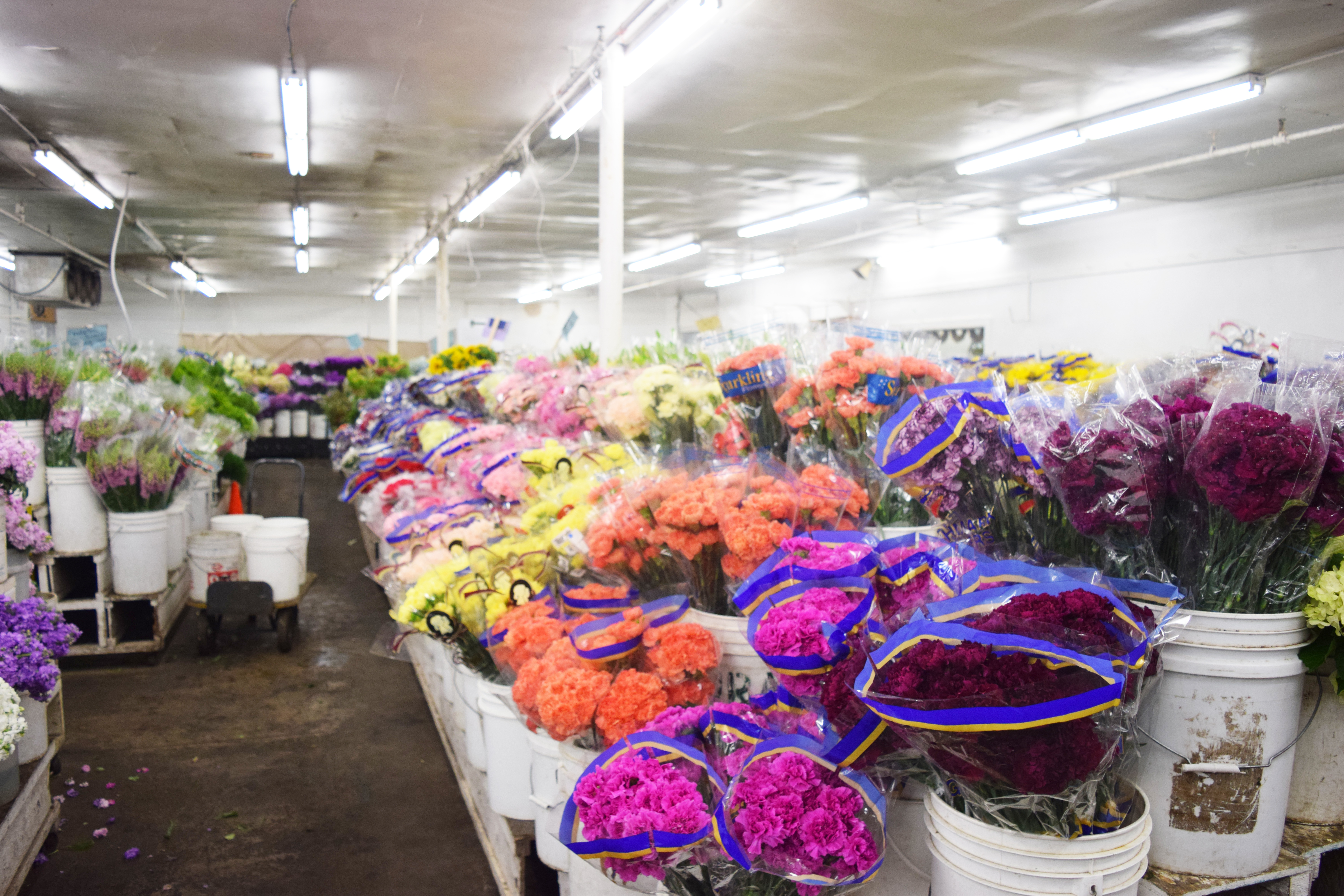 A Day In The Life Of A Flower Wholesaler California State Floral