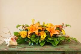 fallflowers2mccool